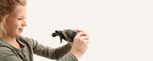 fillette et tortue de Zoodyssée