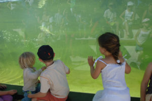 enfants qui regardent le spectacle des loutres à Zoodyssée